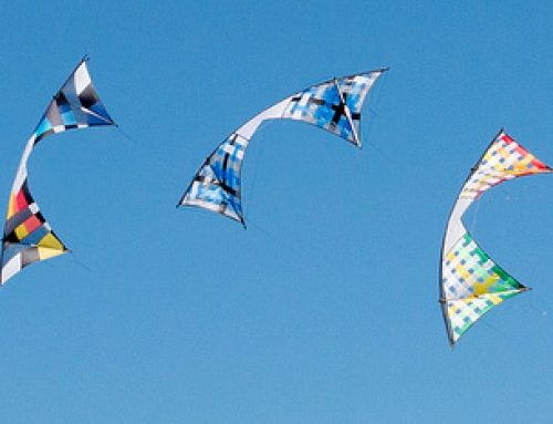 Cervia Kite Festival: the best kite festival in Italy