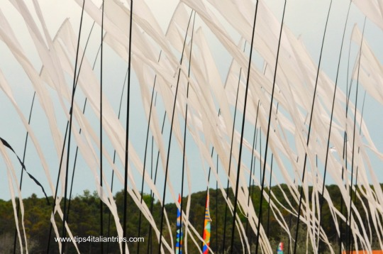 International Kite Festival Cervia banners in the wind