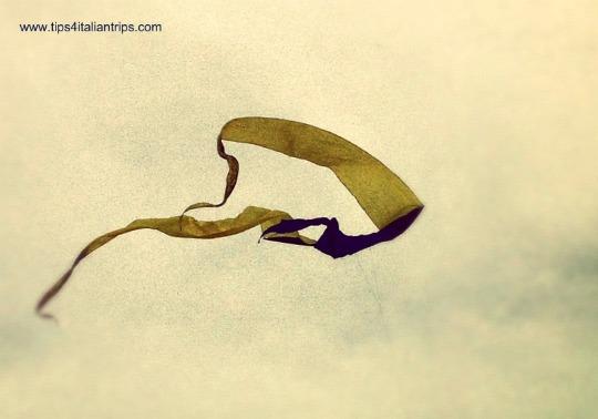 International Kite Festival Cervia flying kite