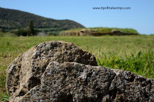 Populonia etruscan park 1
